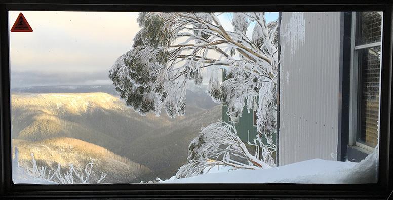window-crop